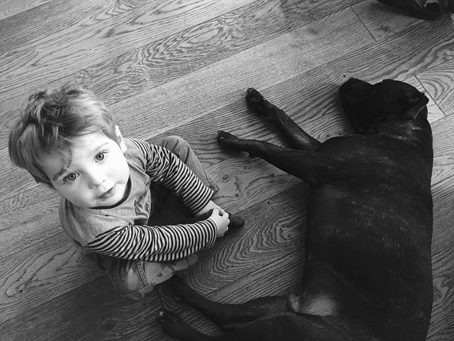 pes a dítě