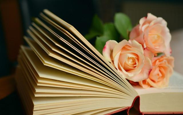 knížka
